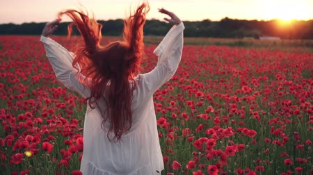 ruivo : Red-haired woman throws her hair up standing in field of poppies in rays of setting sun, rear view