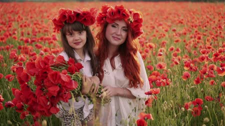 çelenk : Young mother and little daughter stand in blooming field in wreaths of wild poppy flowers Stok Video