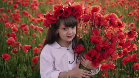 çelenk : little girl with wreath on her head gathers red poppy flowers in flowered field, slow motion Stok Video