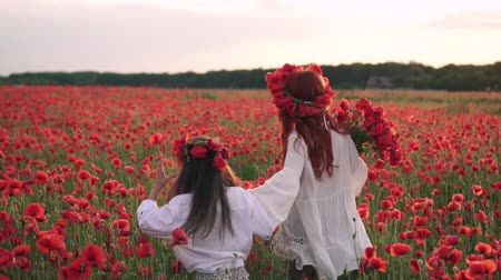 çelenk : Happy mom and daughter are running through blooming poppy field at sunset, rear view, slow motion