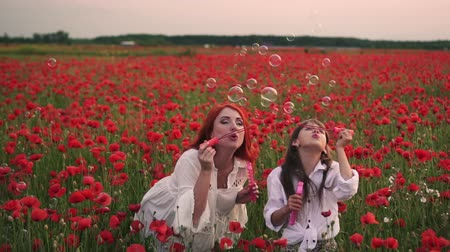 çelenk : little girl with her mother playing with soap bubbles in flowering field of poppies, slow motion