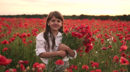 lehkost : Little smiling girl with bouquet of red poppies standing in flowered field at sunset