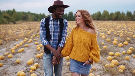 зловещий : A young interracial couple is walking in a pumpkin field. Стоковые видеозаписи