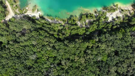 szmaragd : Top down view of the shore of a blue lake in a dense green forest.