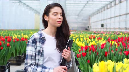 A female greenhouse worker inspects tulips and enters data into a tablet. Steadicam shot.