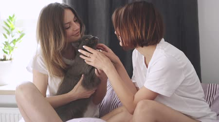 lesbijki : Two happy young women play with cat in bed at home. Wideo