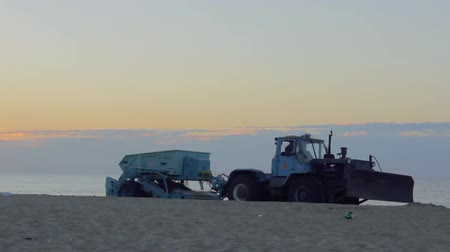 coletando : A large bulldozer with a trailer cleans sand on the beach early in the morning. A special harvesting machine collects garbage on the coast