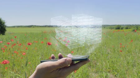 depósito : Hologram of stacks of money on a smartphone. Person activates holographic image on the phone screen on the field with blooming poppies Stock Footage