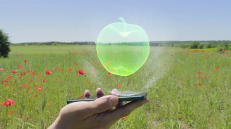 artificial flower : Hologram of apple on a smartphone. Person activates holographic image on the phone screen on the field with blooming poppies