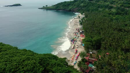 tyrkysový : Virgin beach is a great place in the jungle Aerial Dostupné videozáznamy