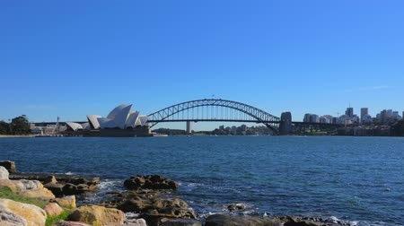 senhora : Panoramic view of Sydney Harbour from Mrs Macquaries Point 4k Vídeos