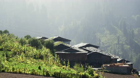 tin roofs : Roofs of the old village in the Himalayas