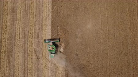 Harvester removes the ripe wheat, aerial view