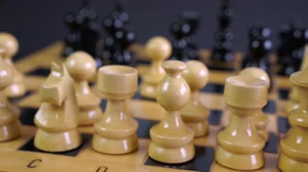 governante : Wooden Chess Pieces on Board