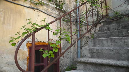 abandonar : Stone stairs of an old house
