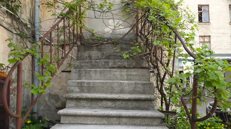 rozsdásodás : Stone stairs of an old house
