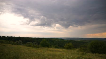 peyzajlı : Summer rural landscape with cloudy sky, dry grass and trees Stok Video