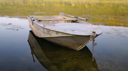 The boat anchored to the bank of the river