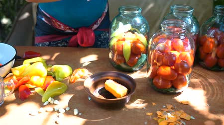 pickled : woman puts tomatoes in jar for preservation, preparation of canned vegetables