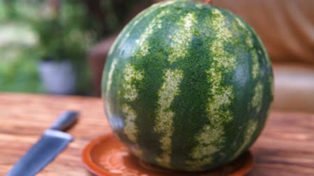 melão : Watermelon on the plate. Gimbal shooting.