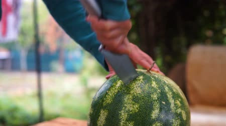arduvaz : Woman cut watermelon on a wooden table.