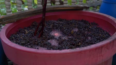 Winemaking. Mixing cap of grape skins. Dostupné videozáznamy