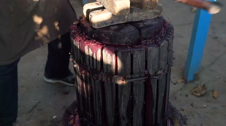 viticultura : Old man using a wine press to crash grapes for wine production Stock Footage