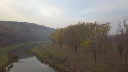 тростник : Beautiful sunrisw over river in rural area. Fog over small river. Mountains landscape. Стоковые видеозаписи