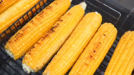 cabeçalho : Close up of appetizing grilled sweet corn on the bbq grill. Street food festival. Vídeos
