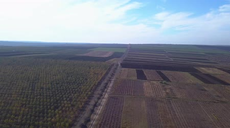 plowed land : The sun Stock Footage