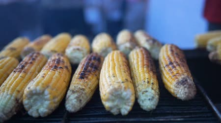 kukoricacső : Close up of appetizing grilled sweet corn on the bbq grill. Street food festival. Stock mozgókép