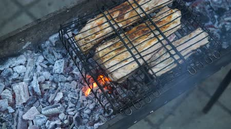 откорме : Barbecue With Delicious Grilled Meat On Grill. Barbecue Party. Chicken meat pieces being fried on a charcoal grill.