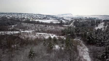 lő : Aerial drone view in idyllic winter landscape. Street running through the birds eye view. Stock mozgókép
