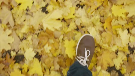 süet : View from above, legs in brown shoes with white laces walking along autumn fallen foliage Stok Video