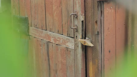 защелка : The old wooden door to the old house with a wooden latch