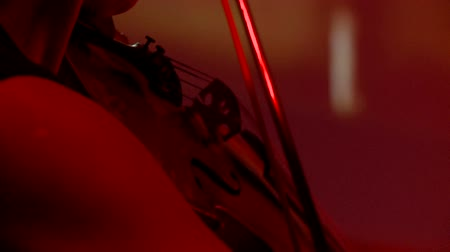 playing band : Symphony Orchestra during performance. Closeup Violinists play at a concert