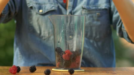 espinafre : The girl pours berries in a bowl for smoothies, preparing smoothies Stock Footage