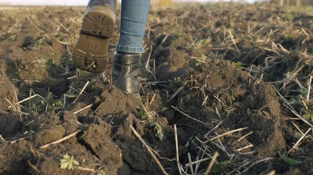 Girl is walking through the plowed field. Female feet are walking on the ground