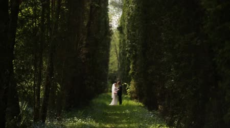 redhead suit : bride and groom are among fir trees