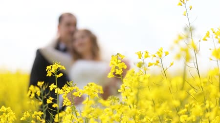 cerimônia : Husband and wife in wedding dress and suit smiling and standing among yellow flowers. Vídeos