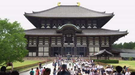 буддист : Nara, Japan - May 28, 2018 : Tourist walking at front of main hall Todaiji Temple, a Landmark of Nara. The worlds largest wooden building and world heritage site. Стоковые видеозаписи