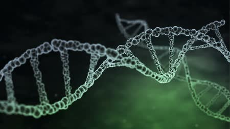 DNA strands are assembled from individual elements