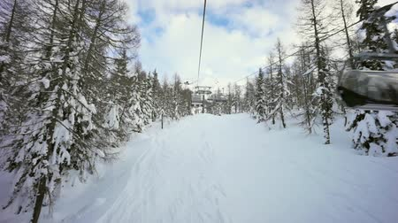 esqui : ski slope in the forest, on snow covered italian alps