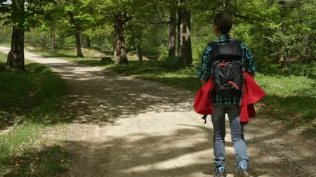 Woman with backpack walking on a dusty road through a forest area - enjoying nature Stock Footage