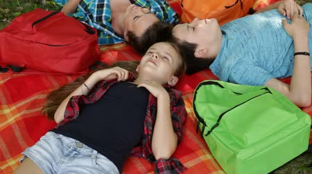 Woman and kids on a picnic relaxing and lying on blanket under the trees - camera hovers and circles above Stock Footage