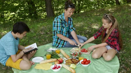 Woman and kids on a picnic relaxing and prepare food on blanket under the trees at the forest edge - camera tilt down Stock Footage