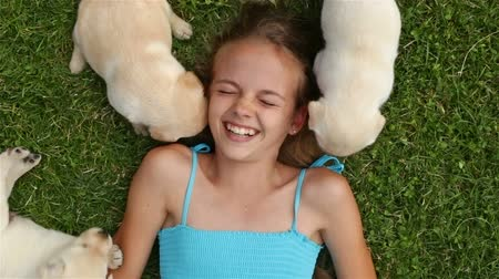 Girl lying on the grass and playing with labrador puppies - laughing with joy