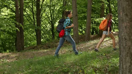 Hikers enjoy walking in forest - woman and teenagers walking uphill among trees
