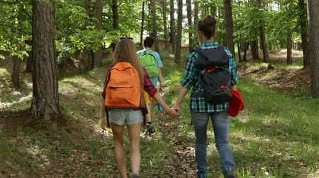 Hikers enjoy walking in forest - woman and teenagers walking uphill among trees - camera follows behind