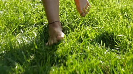 Walking barefoot in the grass - backlight on bare feet walk on green meadow, closeup Stock Footage